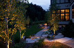 landscape lighting-curved paver path-fire feature-large cut sones-native tree and plantings