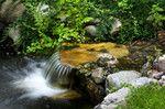 waterfall-backyard