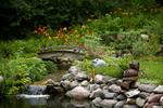 natural pond/swimming