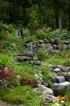 waterfall/multi- level/natural plantings